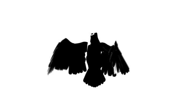 vídeos de stock e filmes b-roll de silhueta de vista frontal de águia voadora em espiral - dia de reis