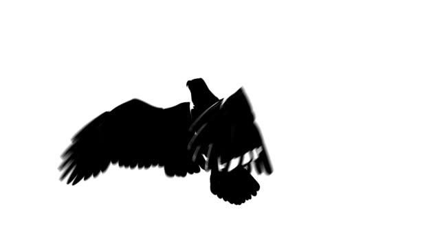 vídeos de stock e filmes b-roll de silhueta de vista metade de águia voadora de repetição (bp - dia de reis