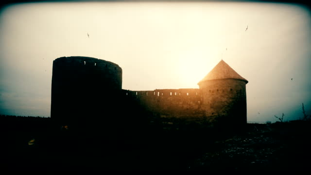 Silhouette of a ruin of dark castle with flying black birds timelapse video