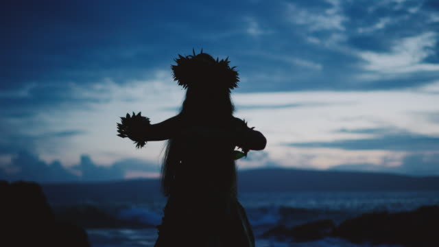 vídeos de stock e filmes b-roll de silhouette of a traditional hawaiian hula dancer - saia