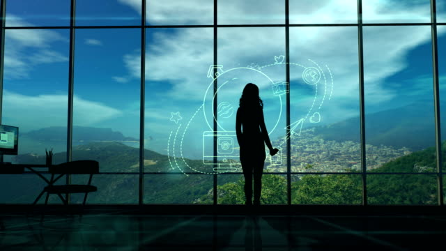 Silhouette of a Woman and Infographics on Internet and Social Media themes Silhouette of a Woman looking infographics on the theme of the global Internet and social media. landing touching down stock videos & royalty-free footage