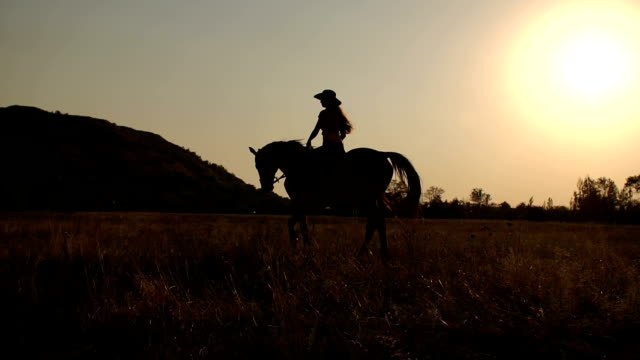 silhouette of a woman riding a horse in the field. - kapelusz kowbojski filmów i materiałów b-roll