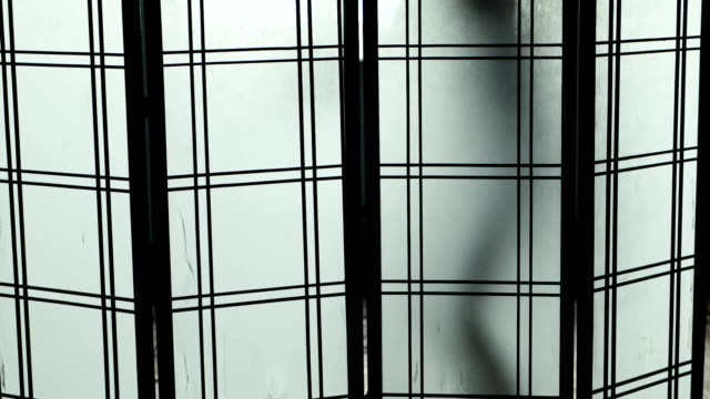 silhouette of a woman who dances for translucent glass video