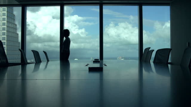 Silhouette Of Businesswoman On Mobile Phone In Boardroom video