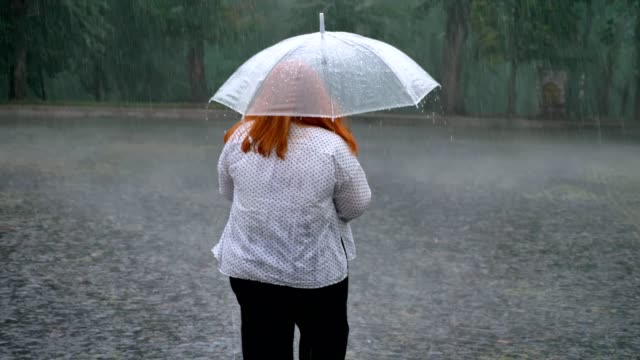 Silhouette of fat ginger girl is walking in park under rain, holding umbrella, back view