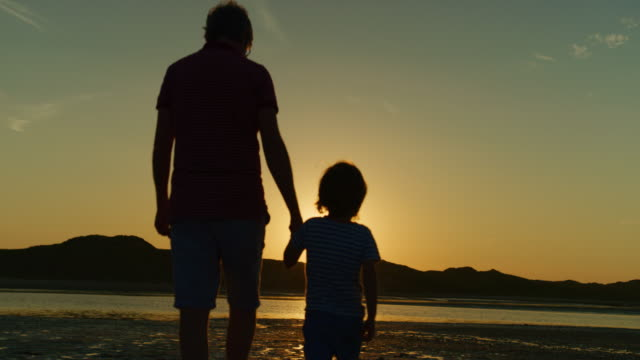 vídeos de stock e filmes b-roll de silhouette of father and son walking together at beach - mãe solteira