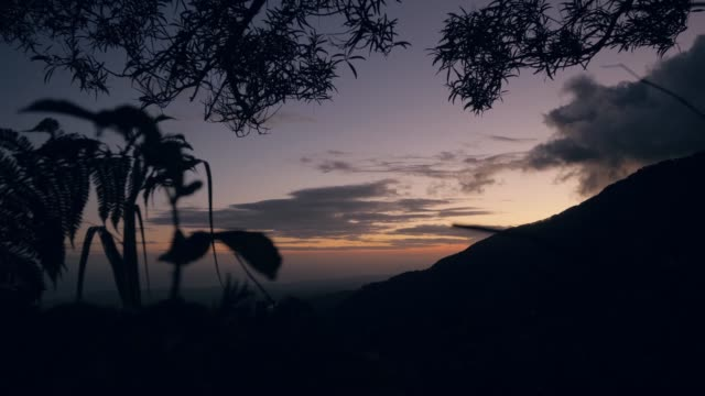 Silhouette of mountain and leaves against the evening picturesque sky.