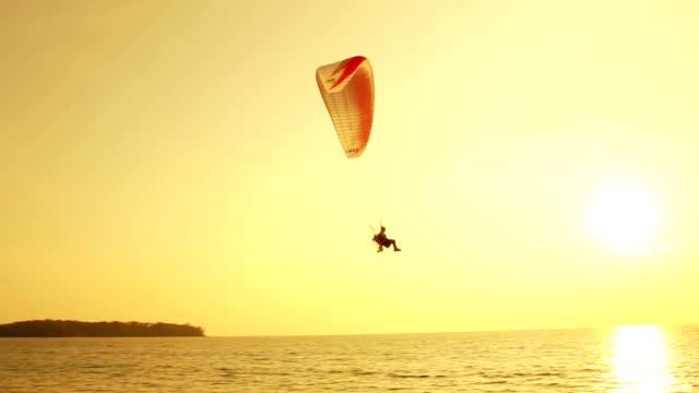 silhouette di parapendio al tramonto sulla spiaggia tropicale - volo con parapendio video stock e b–roll