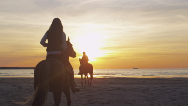 Silhouette of Two Young Riders on Horses at Beach in Sunset Light. Back View. video