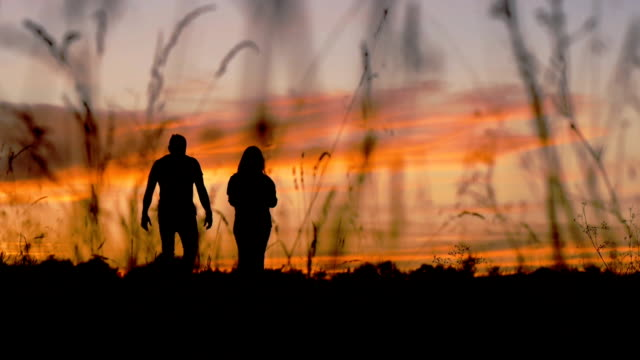 Silhouette of walking couple video