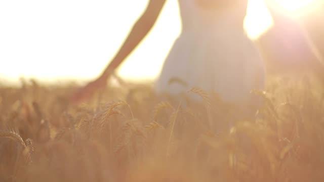 Silhouette of woman in wheat field in sunset light