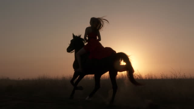 Silhouette of woman rider in red dress riding horse against the sun at sunset Young girl in red dress riding black horse against the sun. Silhouette of woman rider with her stallion galloping across a field kicking up dust at sunset. Horseback riding in slow motion. horseback riding stock videos & royalty-free footage