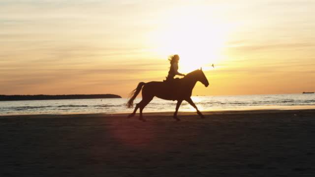 Silhouette of Woman Riding Horse Along Beach Shoreline video