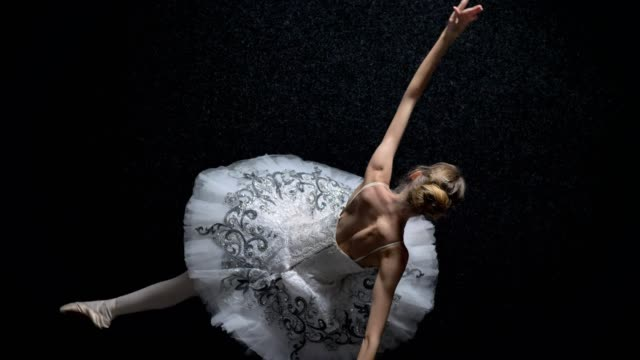 silhouette of young elegant woman ballerina in tutu is dancing, ballet concept, movement concept, top shot - tutù video stock e b–roll