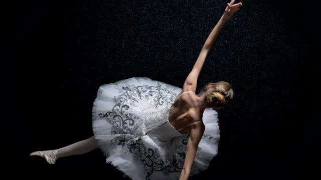 silhouette der elegante mädchen ballerina im tutu tanzt ballett konzept, bewegungskonzept, top shot - ballettröckchen stock-videos und b-roll-filmmaterial
