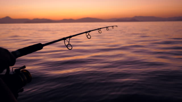 Silhouette Scene of Fisherman Hold Fishing Rods Beside Tranquil Ocean at Sunrise Silhouette Scene of Fisherman Hold Fishing Rods Beside Tranquil Ocean at Sunrise fishing rod stock videos & royalty-free footage