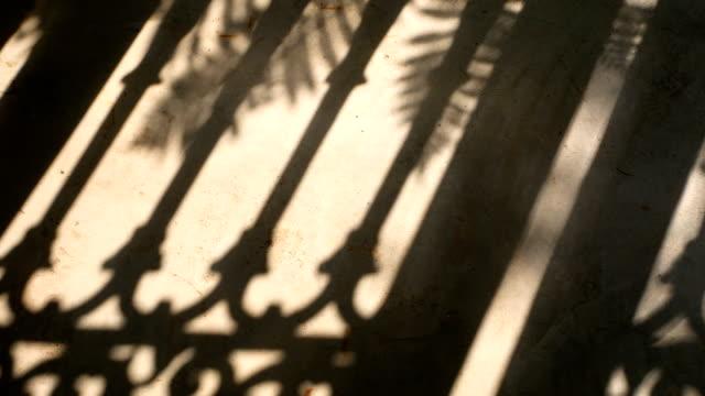 セメントの床に自然風でフェンスやヤシの葉モーションの 4 k. シルエット影。 - 影点の映像素材/bロール