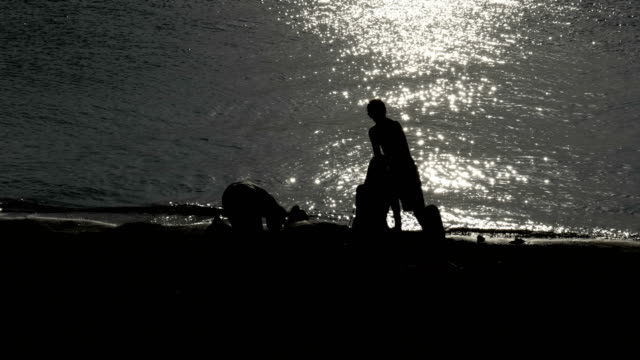 Silhouette Young Play Shore