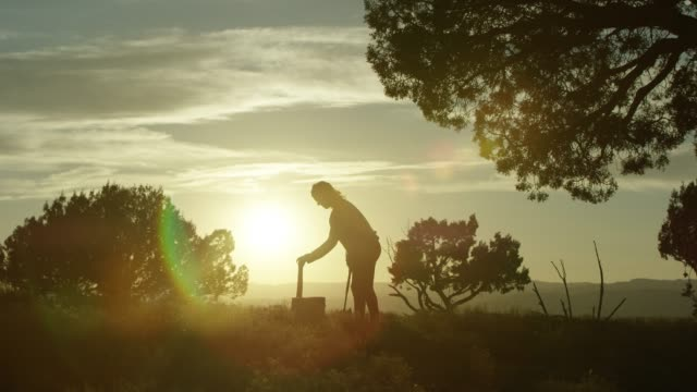 a silhouetted woman positions wood and then chops it with an axe at sunset - inarcare la schiena video stock e b–roll