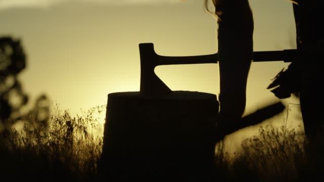 en siluett kvinna kilar axe i stubbe och samlar ved vid solnedgången - single pampas grass bildbanksvideor och videomaterial från bakom kulisserna