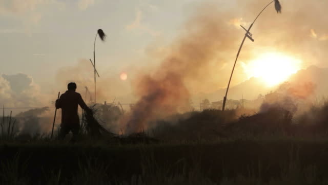 Silhouettes of farmer setting fire of straw stubble in Ubud Bali  during sunset video