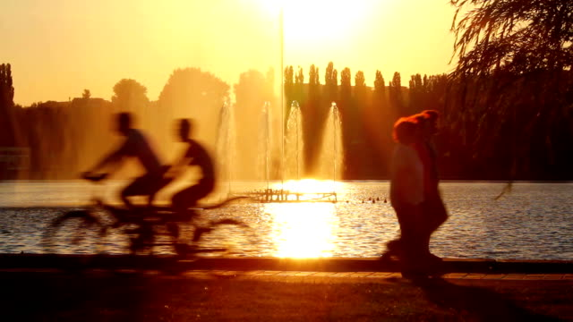 Silhouettes of people during sunset in the park