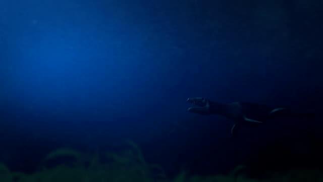 Simolestes - an extinct species of plesiosaur swims in late Jurassic ocean - Side View video