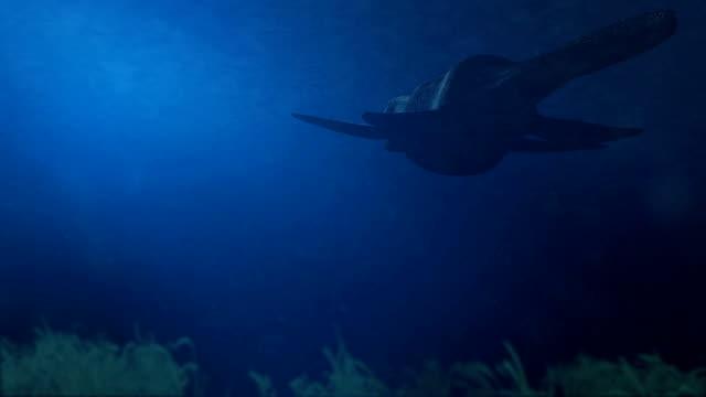 Simolestes - an extinct species of plesiosaur swims in late Jurassic ocean - Rear View video