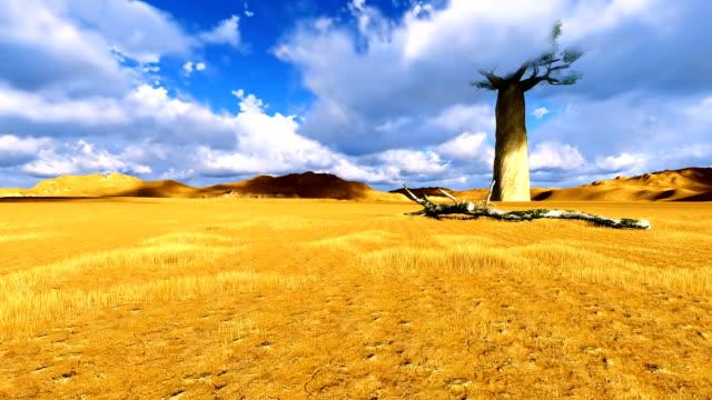Single Baobab Tree Volumetric Clouds Flying Over Single Baobab Tree Volumetric Clouds Flying Over namibia stock videos & royalty-free footage