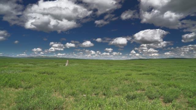 Single landmark stone in the middle of vast plain