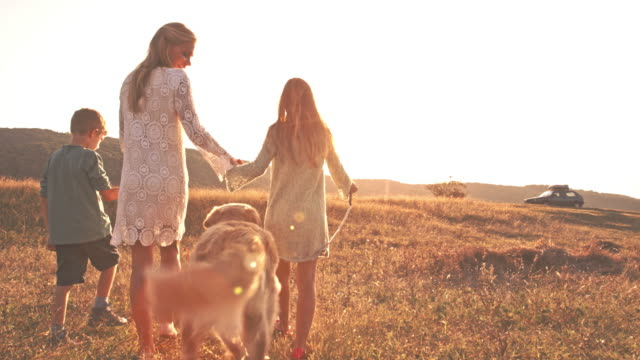 Single parent family walking with dog in field video