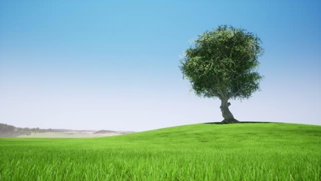 Single tree in retro style. Safari sunset. Vintage summer isolated spring art. Abstract art. Retro design. Landscape design. Pattern nature. Green leaf ecology nature. Vintage design. 4k