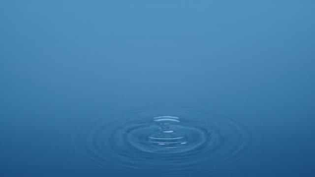 single water drip - studio blue environment - tap water стоковые видео и кадры b-roll