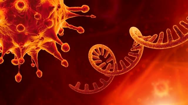 vídeos y material grabado en eventos de stock de coronavirus del arn de una sola cadena - cromosoma