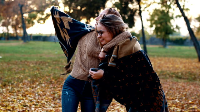 Sister bonding in autumn There are two young woman age 20. They are in public park, suraounded by tree. It is autumn and they enyoj it. They wear a sweater and jeans, and they have a good time. sister stock videos & royalty-free footage