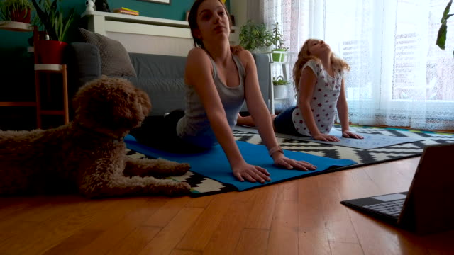 Sisters Practicing Yoga At Home With Instructor Online Two sisters practicing yoga at home with instructor online sister stock videos & royalty-free footage