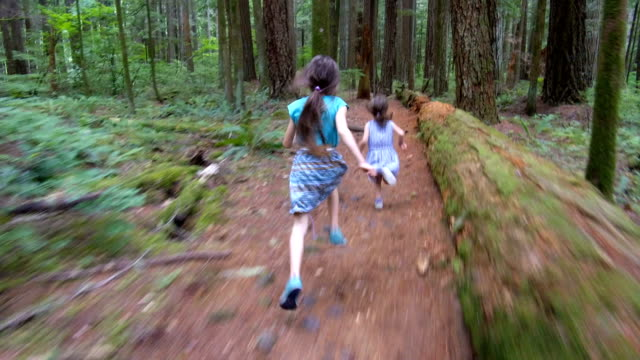 sisters running through the forest follow cam - bambine femmine video stock e b–roll