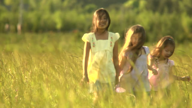 Sisters walk at sunset video