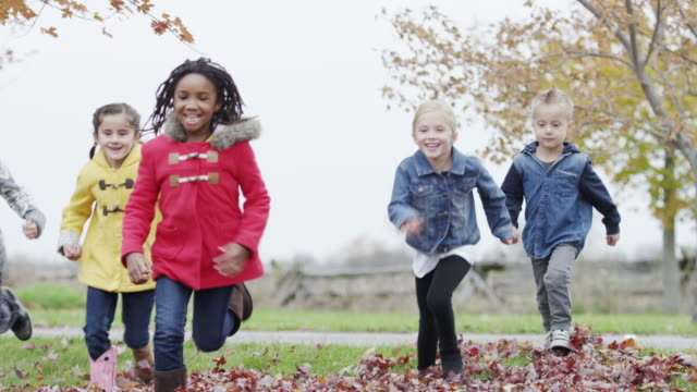 Six and seven year old children playing in the autumn leaves video