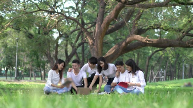 six students meet doing homework together. people meeting team in the park outdoors. man and woman using laptop computer. concept of education, teamwork, learning, information, knowledge and research. - compagni scuola video stock e b–roll