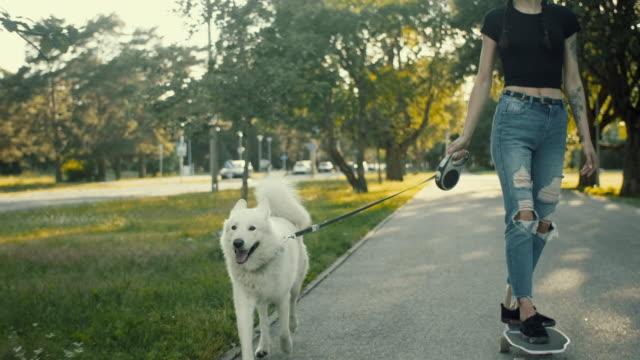 vídeos de stock e filmes b-roll de skateboarding with the pet dog - samoiedo