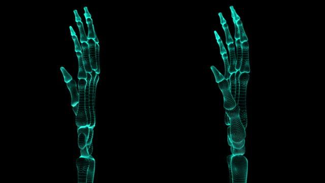 Skeletal hands video