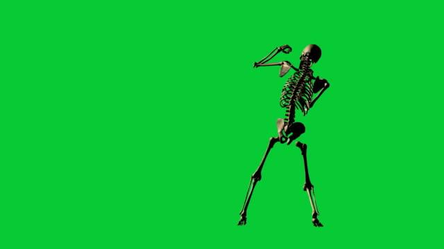 iskelet boks - yeşil ekran üzerinde ayrı - i̇nsan i̇skeleti stok videoları ve detay görüntü çekimi