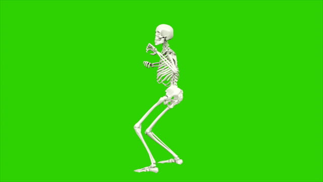 skeleton dancing. seamless loop animation on green screen. - morte video stock e b–roll