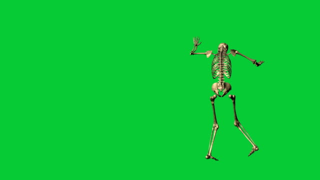 skeleton exercise karate - separate on green screen 3d animation of skeleton exercise karate - separate on green screen animal skeleton stock videos & royalty-free footage