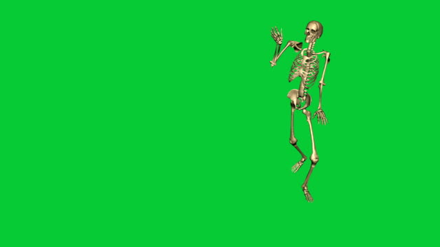 skeleton exercise karate - separate on green screen video