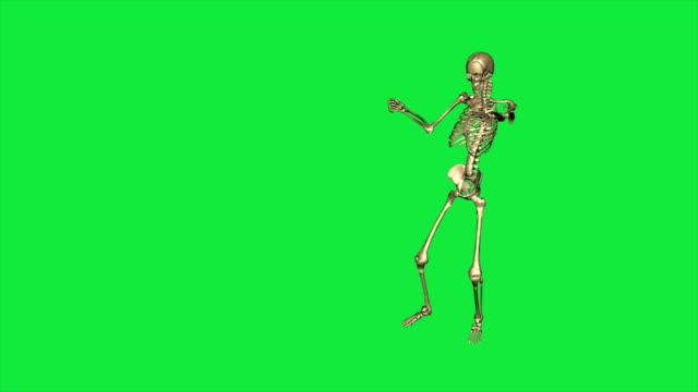 i̇skelet komut ver ve almanca selamı - yeşil ekranda ayrı - i̇nsan i̇skeleti stok videoları ve detay görüntü çekimi