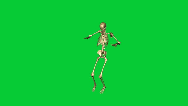 skeleton jump lead - separate on green screen 3d animation of skeleton jump leap - separate on green screen animal skeleton stock videos & royalty-free footage