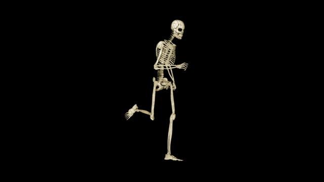 skeleton running morphing into human, black - i̇nsan i̇skeleti stok videoları ve detay görüntü çekimi