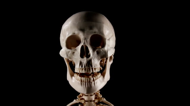 Skeleton talking video